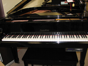 Piano Disc by young chang baby grand