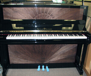New Schulze Pollman 50 Professional upright 100% made in Italy